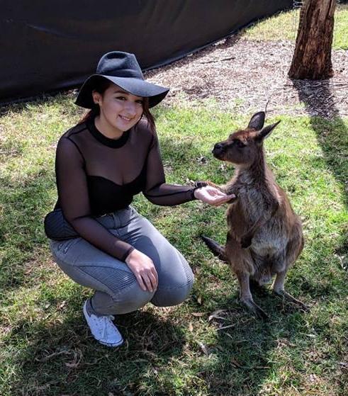 walla wallaby